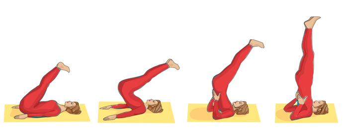 Sarvangasana-yoga-Steps